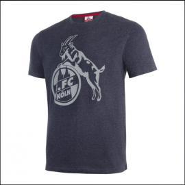 """1. FC Köln T-Shirt """"Basic anthra grau"""""""