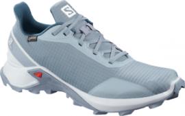 Schuhe ALPHACROSS GTX FLINT /Pearl