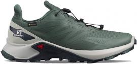 Schuhe SUPERCROSS BLAST GTX Gr/LunR