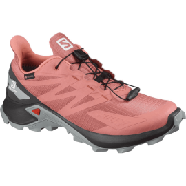 Schuhe SUPERCROSS BLAST GTX W Brick