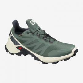Schuhe SUPERCROSS GTX Balsam Gr/Vanilla/l