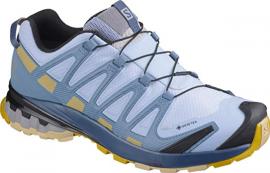 Schuhe XA PRO 3D v8 GTX W Kentucky