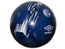 FC Schalke Neo Trainer