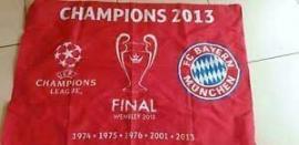 FCB Fahne Champions 2013