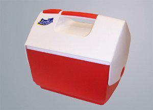 Kühlbox 6,6 l