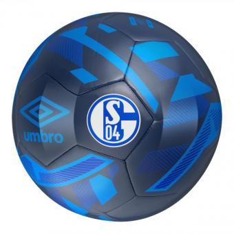 Schalke Neo Trainer